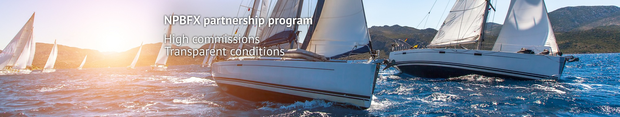NPBFX www.npbfx.com - Page 2 Partnership